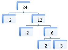 factor tree for 24