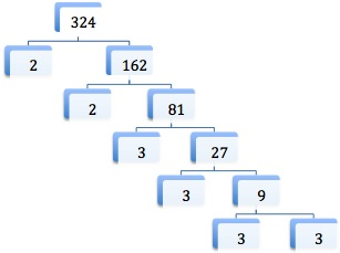 factor tree for 324