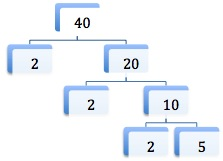 factor tree for 40